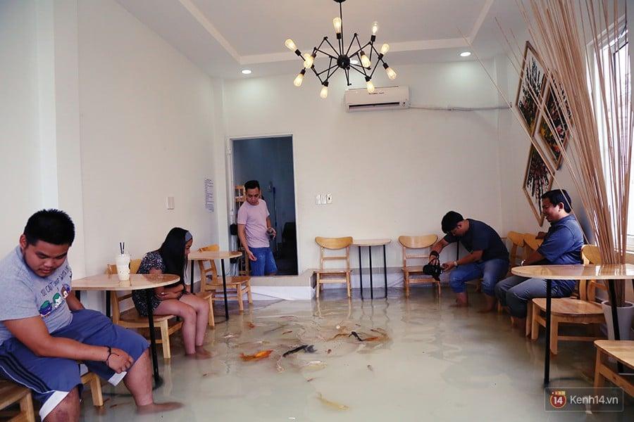 Chủ quán cafe Sài Gòn cho khách cởi giày, ngâm chân dưới hồ cá: Có nội quy cho khách, chúng tôi còn cử 8 nhân viên túc trực 24/24 theo dõi cá - Ảnh 1.