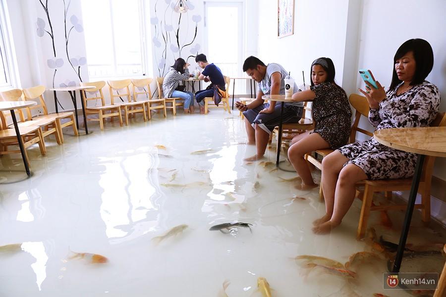 Chủ quán cafe Sài Gòn cho khách cởi giày, ngâm chân dưới hồ cá: Có nội quy cho khách, chúng tôi còn cử 8 nhân viên túc trực 24/24 theo dõi cá - Ảnh 2.