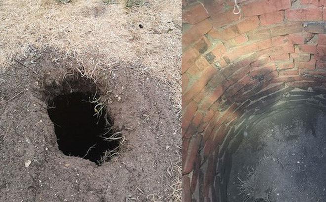 Đời sống - Phát hiện căn hầm dưới cái lỗ lạ sau nhà, thanh niên tò mò khai quật rồi nhận lời giải thích
