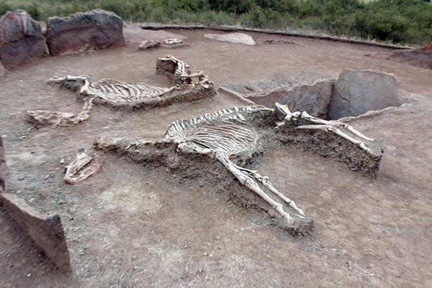 """Phát hiện hài cốt đôi tình nhân chôn cạnh nhau tựa """"Romeo và Juliet"""" thời cổ đại 1"""