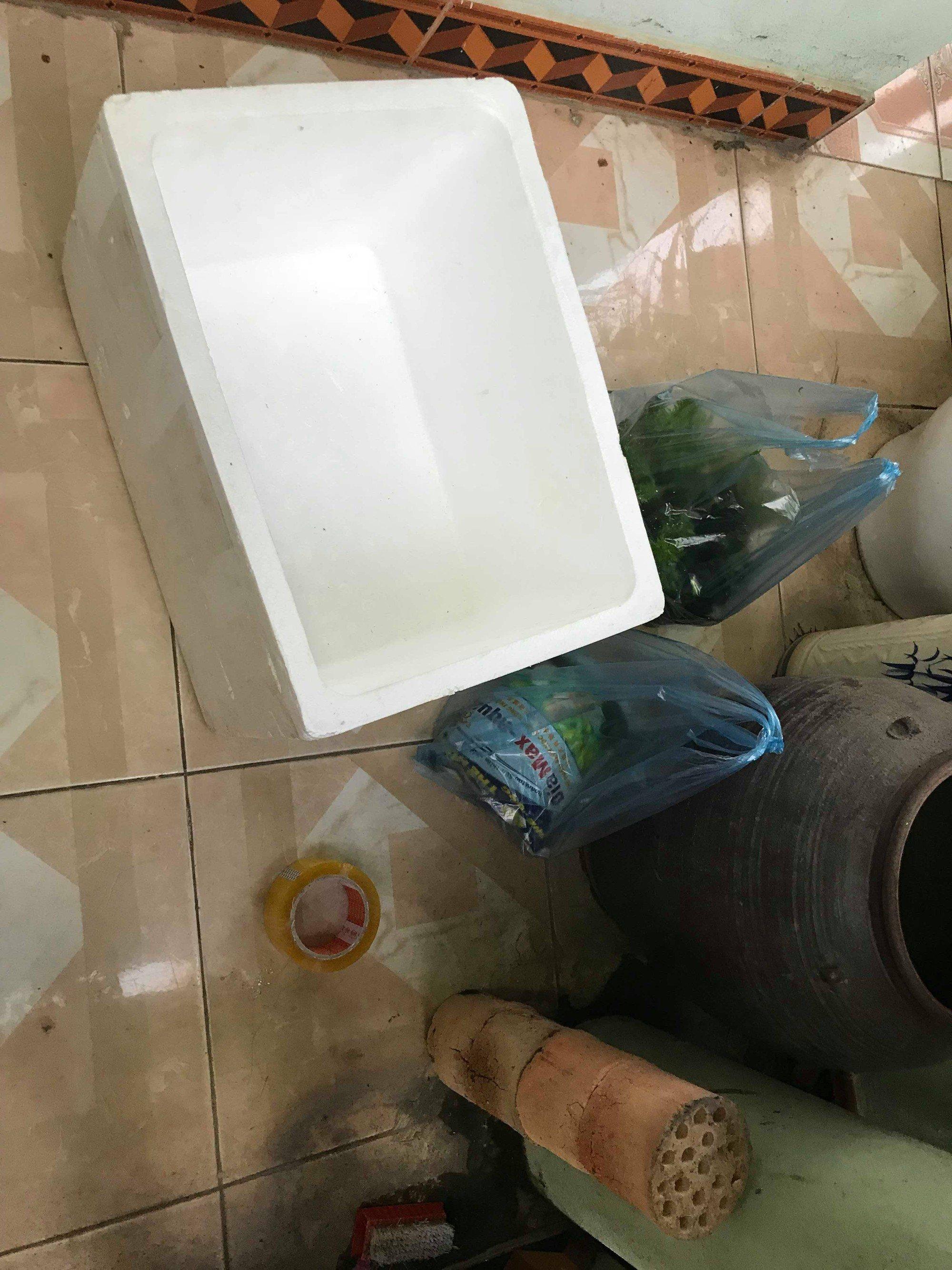 Góc khéo tay hay làm: Chán bể kính đắt tiền, thanh niên setup thùng xốp thủy sinh vừa chất lừ vừa tiết kiệm - Ảnh 4.