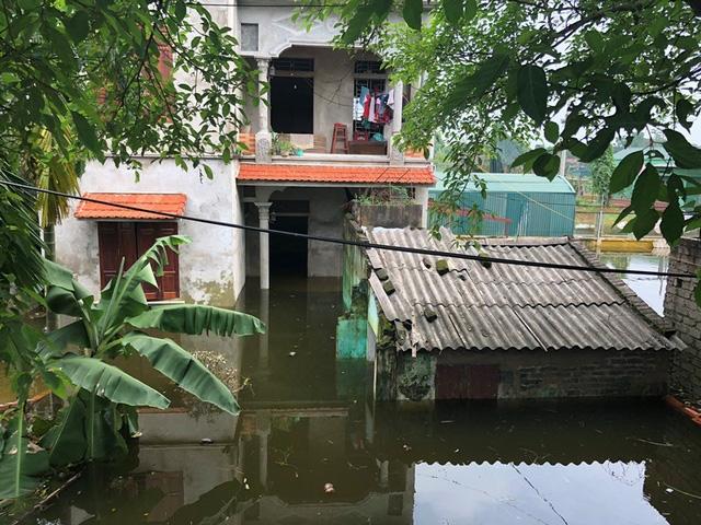 Vỡ đê Bối ở Hà Nam, cả trăm hộ dân sống khổ sở trong biển nước 4