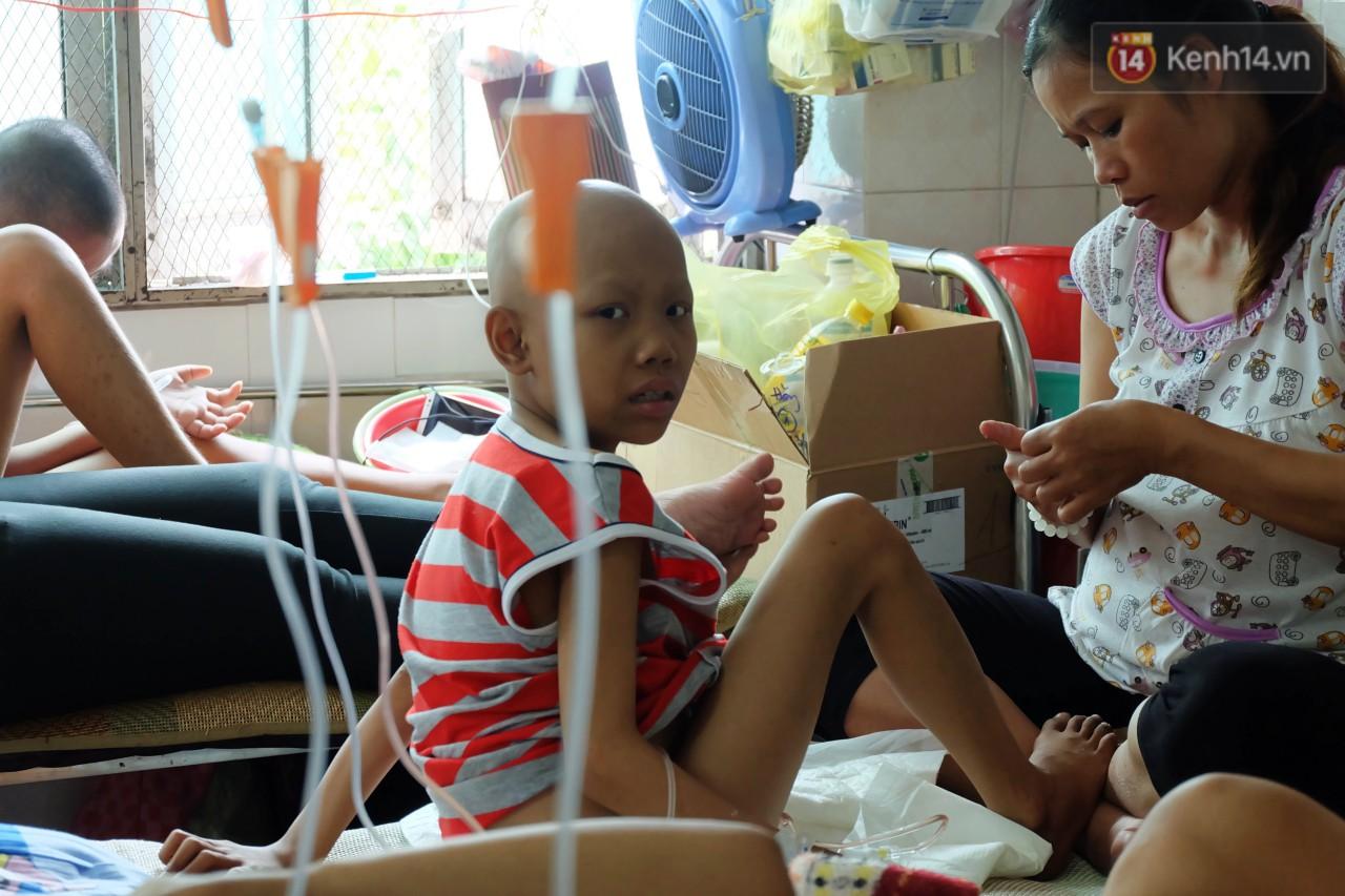 Phòng 301 viện ung bướu: Căn nhà thứ 2 của những đứa trẻ trọc đầu và những người mẹ không tên 1