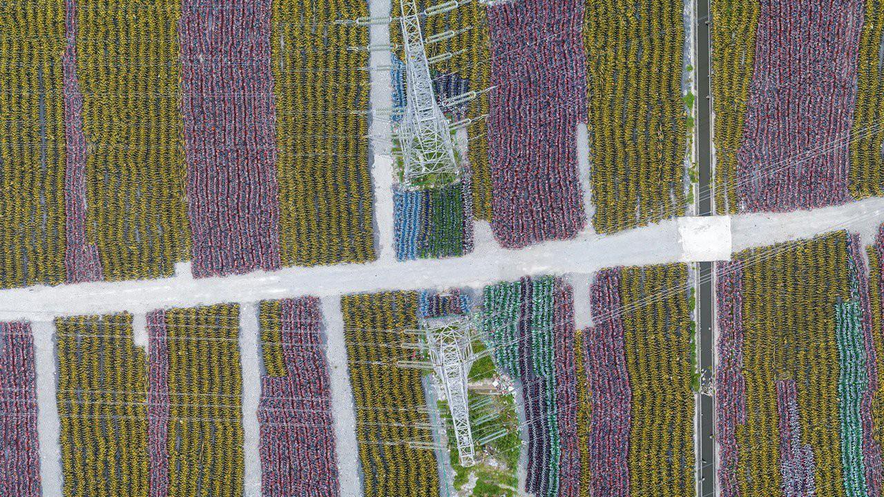 Những 'nghĩa trang xe đạp' chi chít đến nghẹt thở chỉ có ở Trung Quốc 1