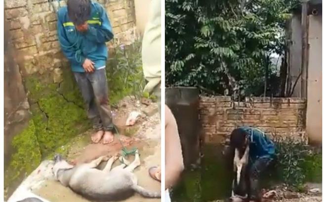 Thanh Hóa: Cẩu tặc bị dân đánh hội đồng, treo chó vào cổ 1
