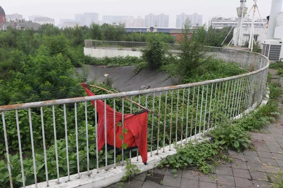 10 năm nhìn lại sân vận động Tổ chim Olympic Bắc Kinh 2008: Hoang tàn đến ám ảnh, niềm tự hào giờ chỉ còn là nỗi tiếc nuối 13