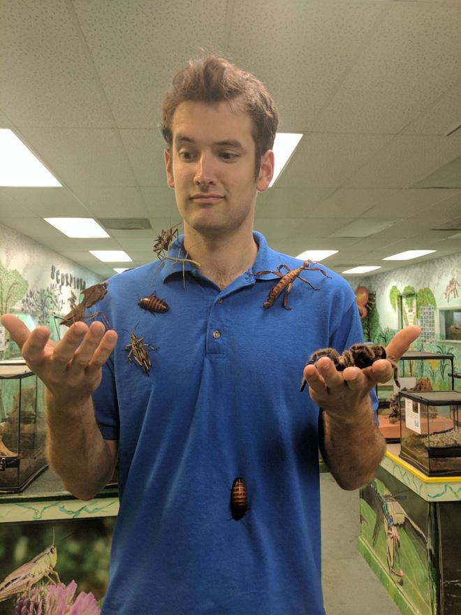 Viện bảo tàng bị trộm mất hơn 7.000 loài côn trùng và nhện kinh dị nhất, và lý do đằng sau thật bất ngờ 2