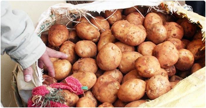 Chuyển hàng trăm tấn khoai tây Trung Quốc đội lốt 'hàng Đà Lạt' ra khỏi chợ nông sản 2