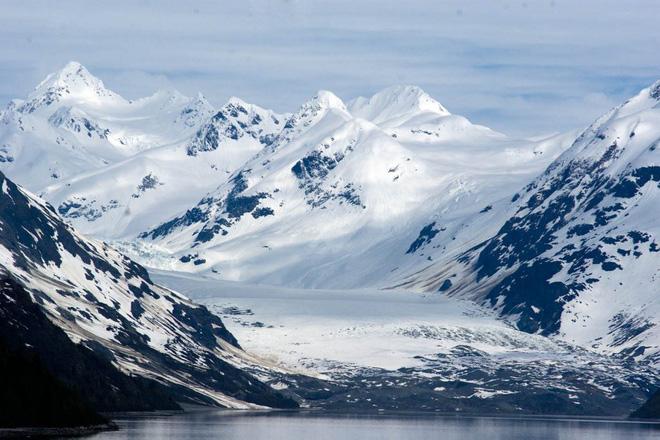 Hiện tượng bất ngờ đang xảy ra với thực vật ở Bắc Cực cho thấy ảnh hưởng ngày càng lớn của biến đổi khí hậu 2