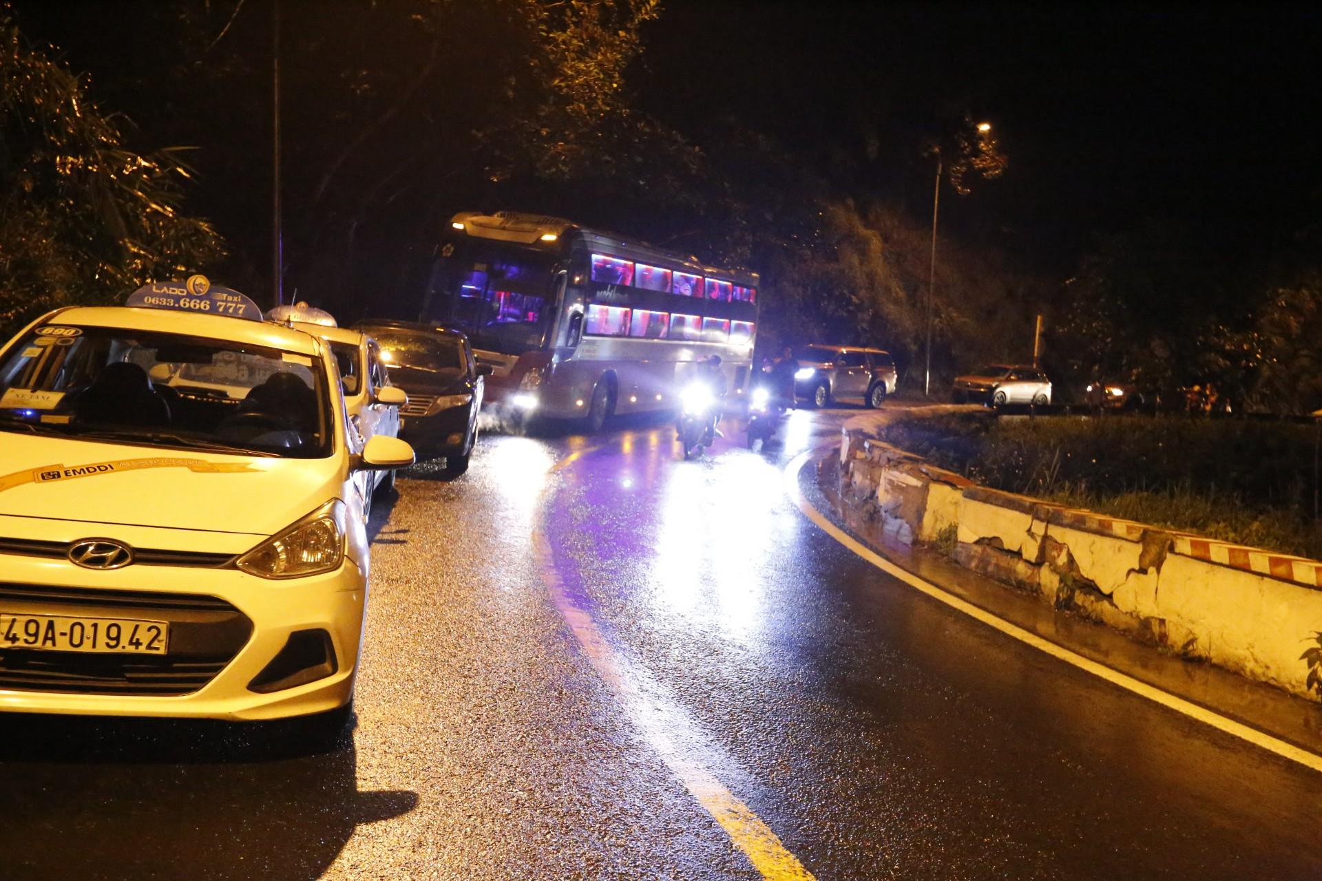 Đà Lạt: Cây thông 20 năm tuổi bị bật gốc đổ chắn ngang đường, giao thông tê liệt hàng giờ 4