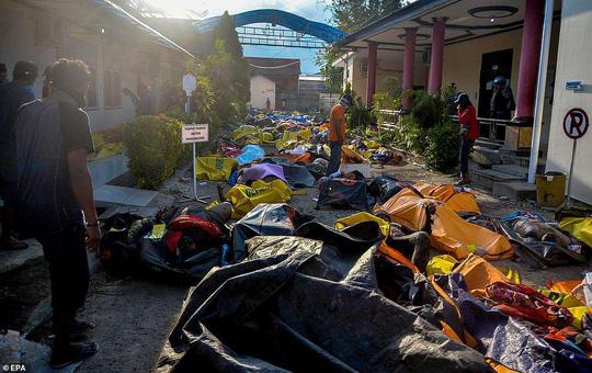 Động đất Indonesia: Lần tìm người thân trong túi đựng thi thể 1