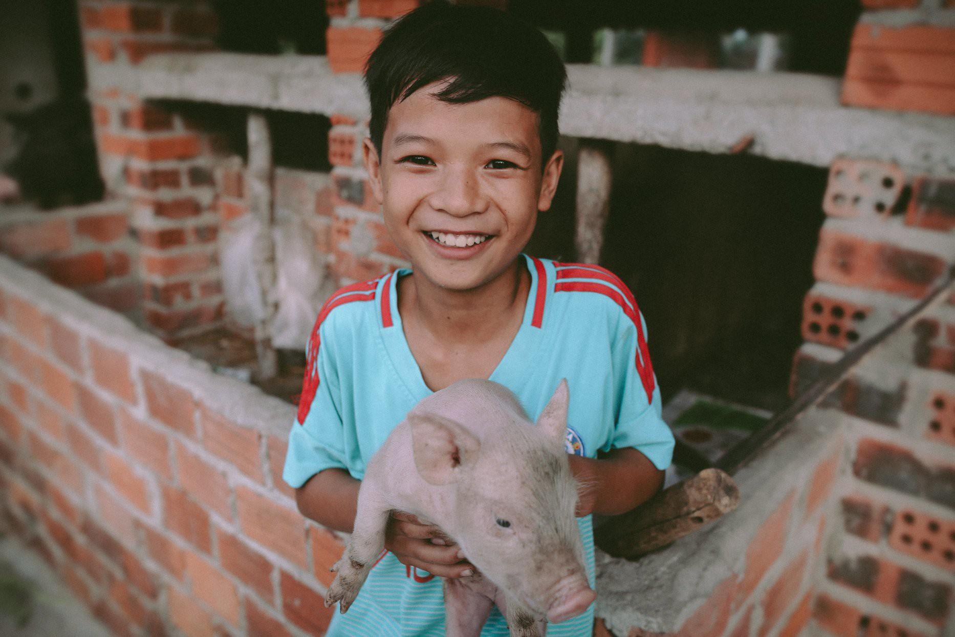 Bộ ảnh xúc động về cậu bé mồ côi ở Quảng Nam tự lập từ năm 12 tuổi, nuôi lợn để được đến trường 1