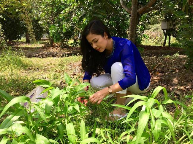 'Người đẹp Tây Đô' Việt Trinh và ngôi nhà an yên bên khu vườn ngập tràn rau trái 2