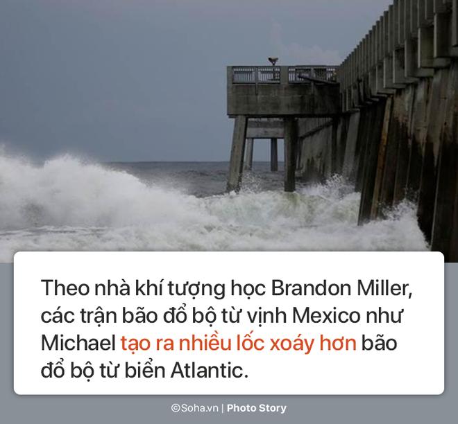 Sức mạnh kinh hoàng của bão Michael và những cảnh 'không tưởng tượng nổi' trên đất liền Mỹ 8