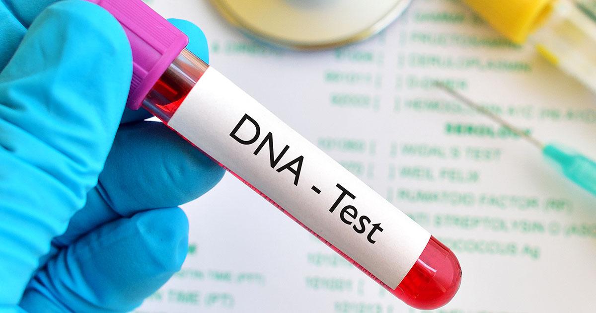 Tìm cha cho con, cô gái dẫn 5 người đàn ông đi xét nghiệm ADN 1