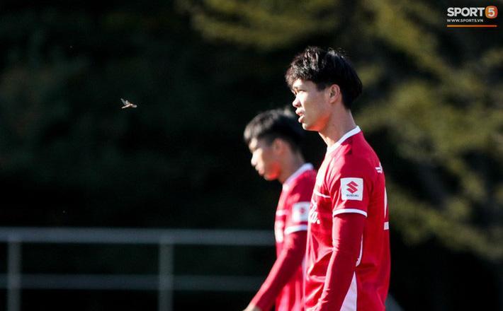 Không khí lạ lùng trong buổi tập của ĐT Việt Nam trước trận đấu với Incheon United 1