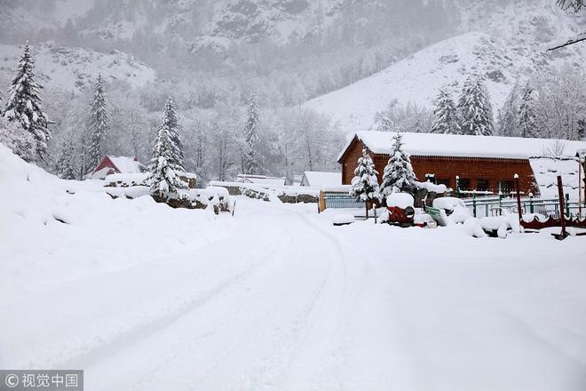24h qua ảnh: Tuyết đầu mùa phủ trắng miền bắc Trung Quốc 3