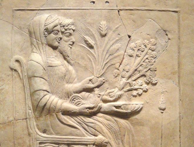 Sự thật ít ai ngờ về cây cần tây: Bổ dưỡng nhưng lại là loài hoa... tang tóc xưa kia 1