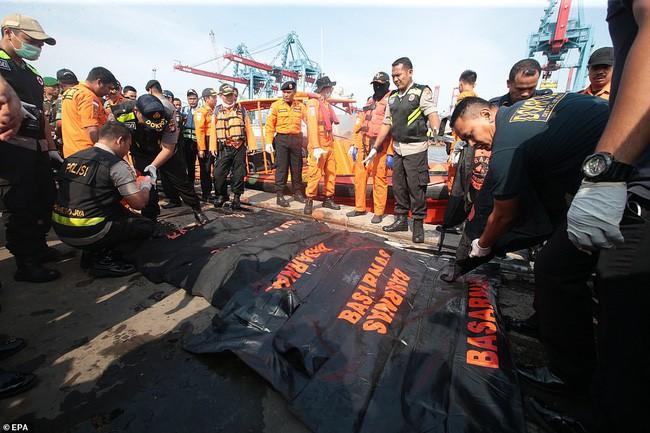 Thực hư về bức ảnh em bé sống sót trên chuyến bay tử thần Lion Air JT 610 được chia sẻ chóng mặt trên mạng 3
