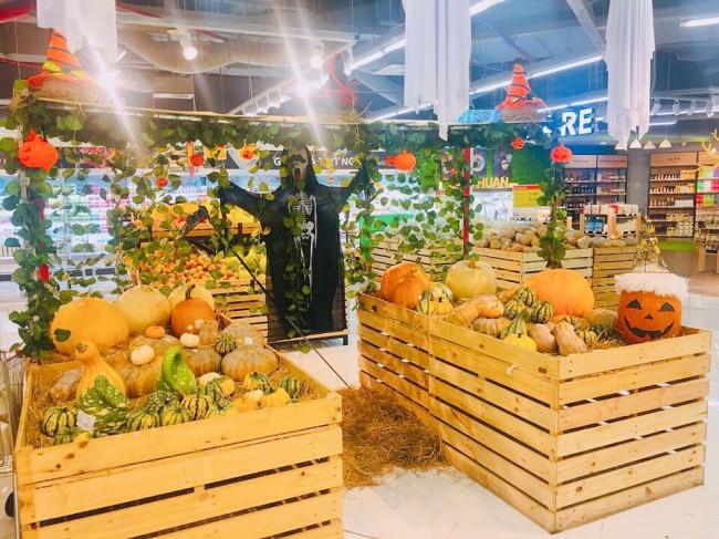 Phát cuồng với bí ngô Halloween khổng lồ lần đầu được trồng ngay tại Việt Nam 2