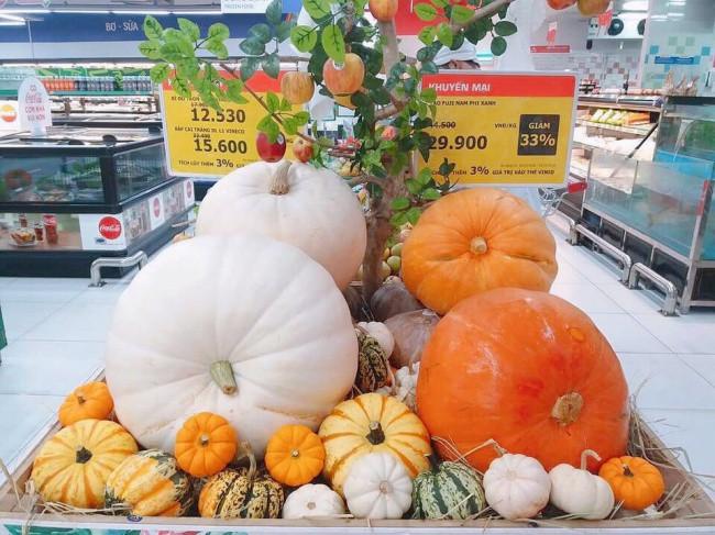 Phát cuồng với bí ngô Halloween khổng lồ lần đầu được trồng ngay tại Việt Nam 4