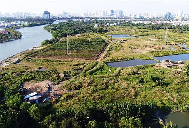 Hình ảnh Lô đất vàng 32 ha rơi vào tay tư nhân liên quan đến ông Tất Thành Cang như thế nào? số 2