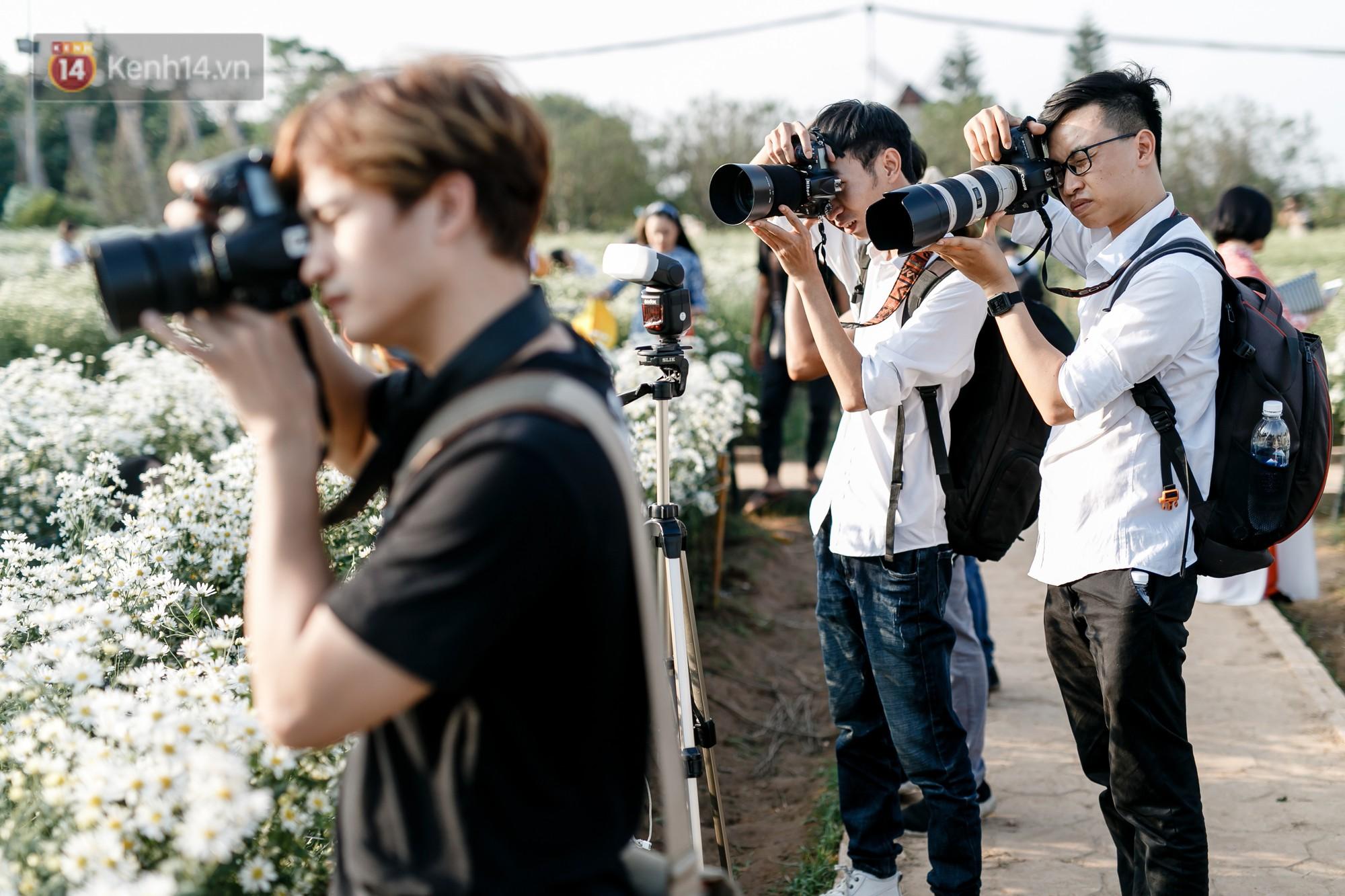 Vườn cúc hoạ mi ở Hà Nội 'thất thủ' cuối tuần: 1 mét vuông có chục nhiếp ảnh gia và mẫu 10