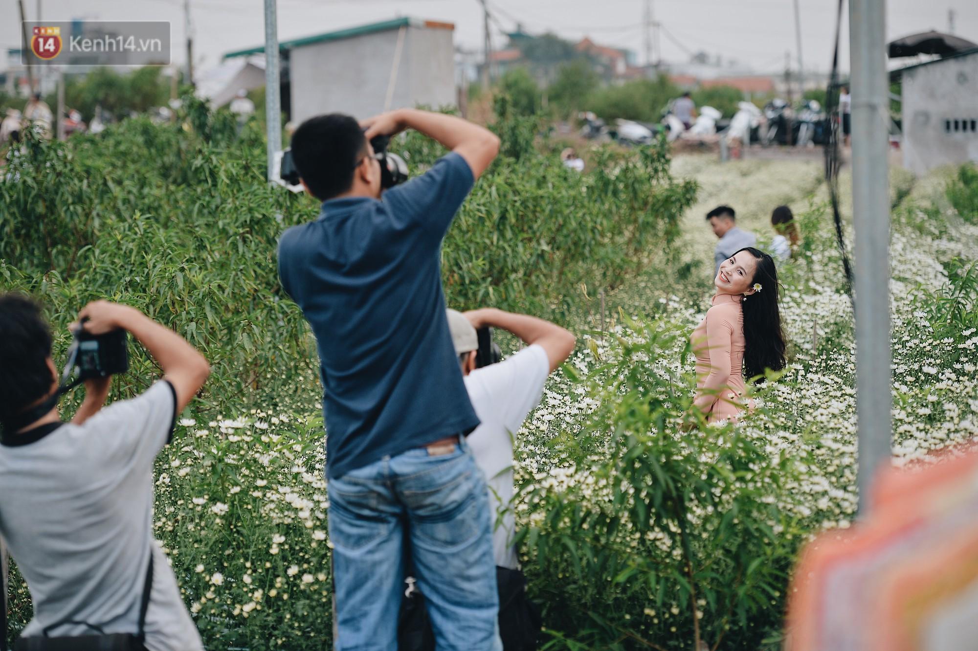 Vườn cúc hoạ mi ở Hà Nội 'thất thủ' cuối tuần: 1 mét vuông có chục nhiếp ảnh gia và mẫu 8