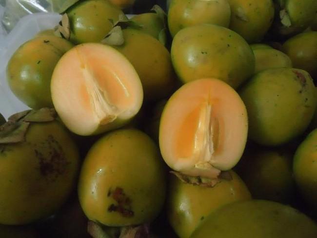 Người phụ nữ bị tắc ruột sau khi ăn 10 quả hồng, cảnh báo mọi người cẩn trọng khi ăn loại quả này 1