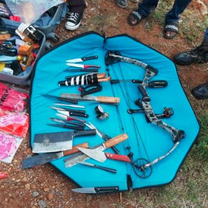 Cảnh sát Nam Phi bắt 6 người Việt tham gia giết 40 con sư tử 2
