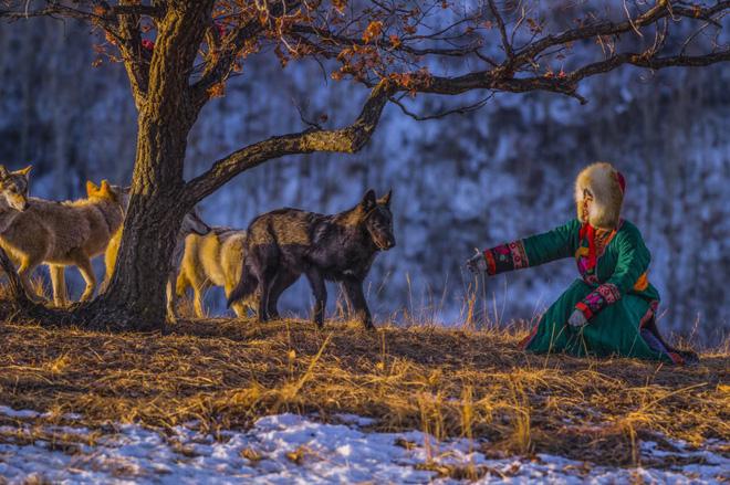 Cô gái Mông Cổ với dàn thú cưng độc 8 con sói, 3 bạn trai đều đòi chia tay vì sợ cãi nàng sẽ bị ăn thịt 3
