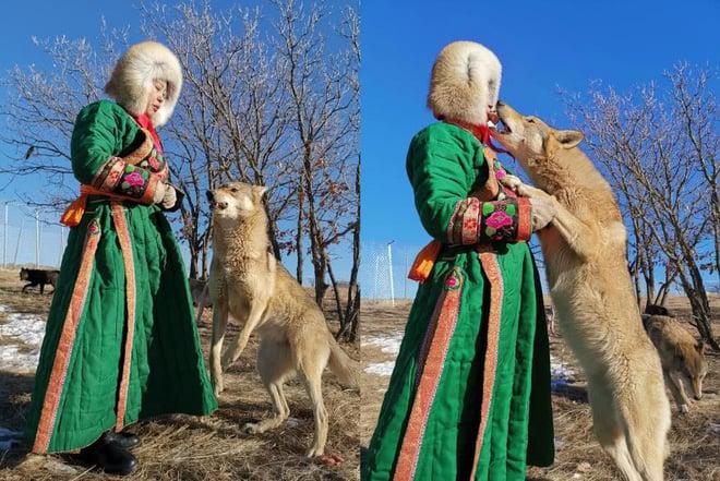 Cô gái Mông Cổ với dàn thú cưng độc 8 con sói, 3 bạn trai đều đòi chia tay vì sợ cãi nàng sẽ bị ăn thịt 5