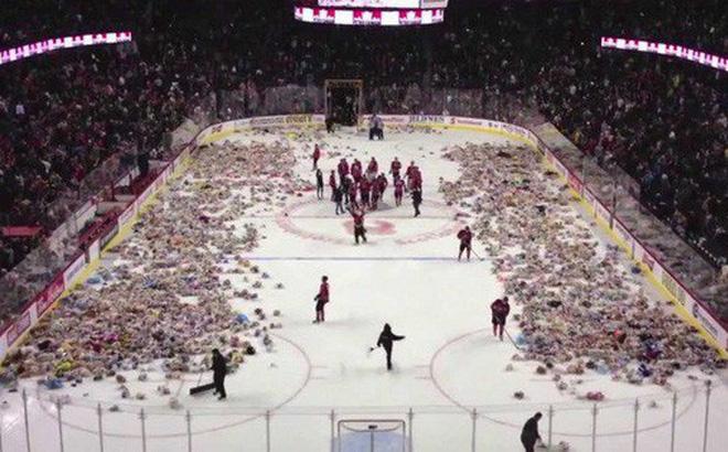 Hình ảnh Clip: Cổ động viên hò hét rồi ném 34 nghìn con gấu bông xuống sân hockey và câu chuyện đầy cảm động phía sau số 1