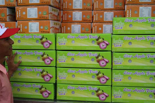 Trái vú sữa Việt tại Mỹ có giá 350.000 đồng/kg 1