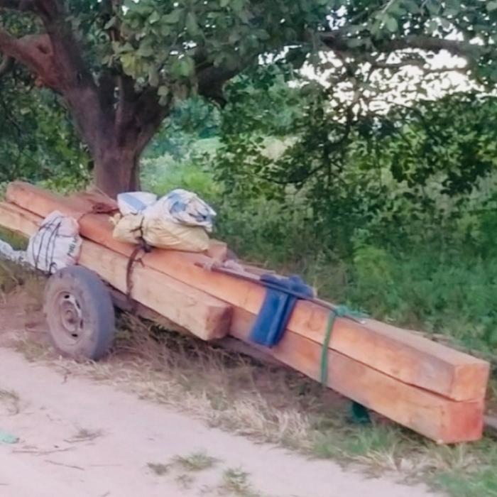 Nghi vấn đoàn xe chở gỗ lậu nghênh ngang qua cửa rừng Gia Lai ngay giữa ban ngày 3