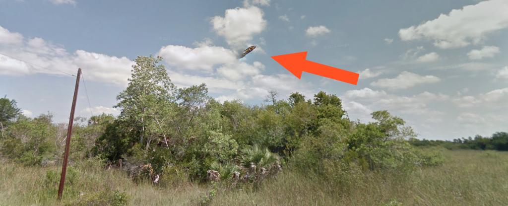 Sự thật về ảnh UFO hiện ra gần khu vực Tam giác Bermuda đang gây xôn xao cư dân mạng Mỹ 1