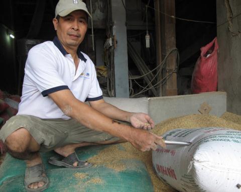 Vụ nhặt 3 cây vàng trong bao lúa: Lộ diện chủ nhân thật sự? 1