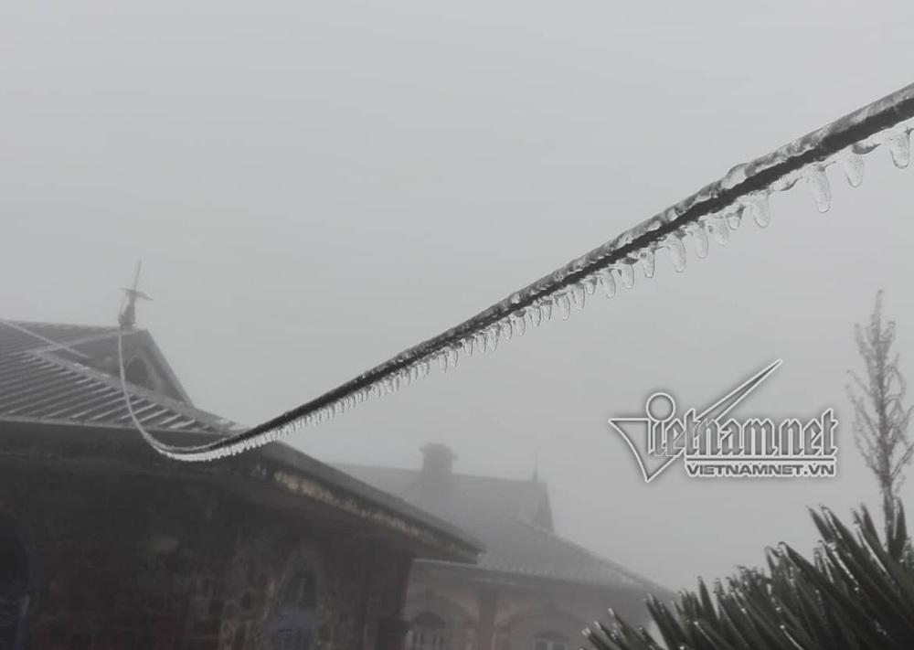 Mẫu Sơn âm 0,5 độ, băng tuyết phủ kín cây 3