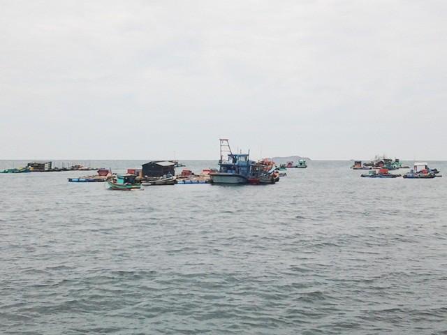 Tin bão số 1 mới nhất: Cà Mau, Bạc Liêu đề nghị Trung ương hỗ trợ cứu hộ, cứu nạn trên biển 1