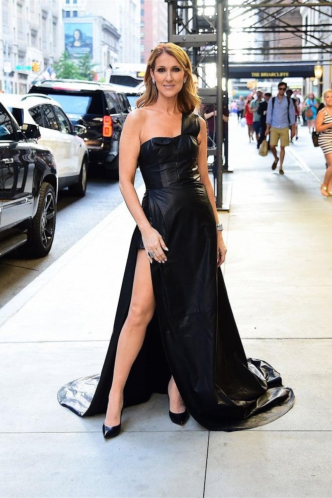 Fan ngỡ ngàng không nhận ra nữ ca sĩ Celine Dion: Thân hình trơ xương, khuôn mặt đầy nếp nhăn  11