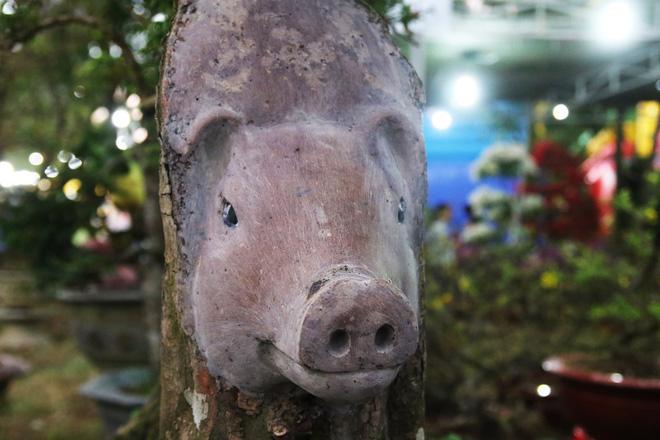 Hình ảnh Cận cảnh cây khế đầu heo có giá nửa tỷ đồng được bày bán thu hút người dân Sài Gòn số 6