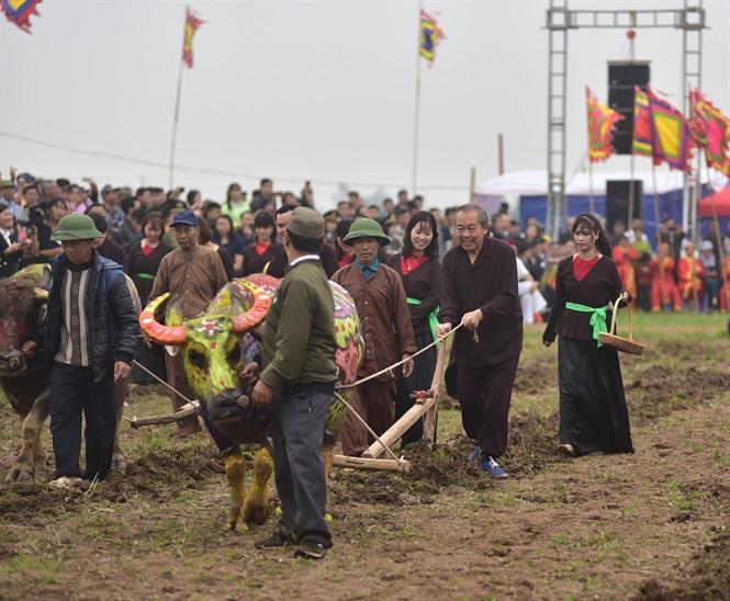 Phó Thủ tướng mặc áo nâu xuống ruộng đi cày tại Lễ hội Tịch Điền 2019 2