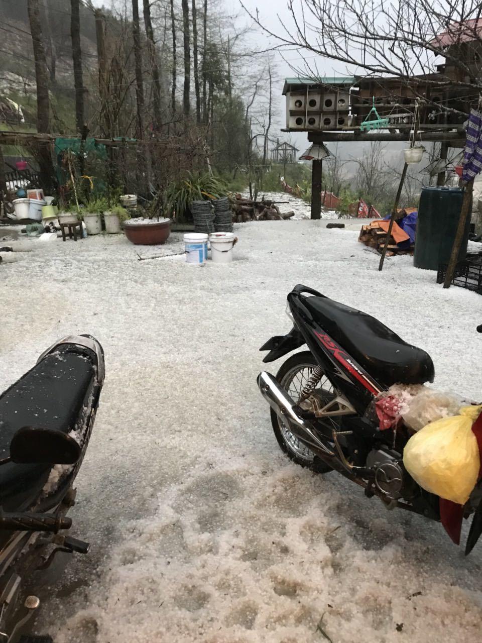 Lào Cai: Mưa băng ngỡ tuyết rơi, phủ trắng đường lên đỉnh Fansipan 3