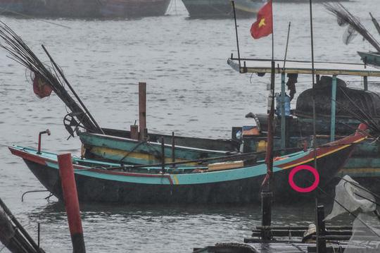 Đi câu mực, hai cha con bị sóng đánh rơi xuống biển: Tìm thấy thi thể người cha 2
