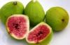 Một số bài thuốc dân gian chữa bệnh từ quả sung