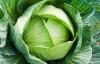 Những bệnh tuyệt đối không được ăn rau bắp cải