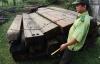 Vụ phá rừng lớn nhất từ trước tới nay tại Đà Nẵng, đã có quyết định khởi tố