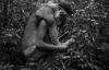 Cận cảnh cuộc sống của bộ lạc ít người nhất hành tinh có nguy cơ tuyệt chủng
