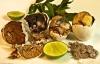 Sầu riêng nằm top những món ăn kinh dị nhất thế giới