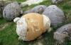Video: Bí ẩn những hòn đá có thể trưởng thành và...